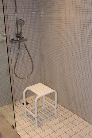 Hotel Mercure Bourg En Bresse: Chambre 251 - Douche handi