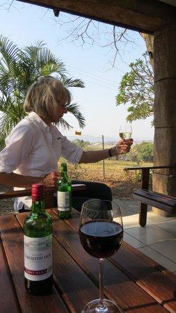 Abangane Guest Lodge: honor bar was great