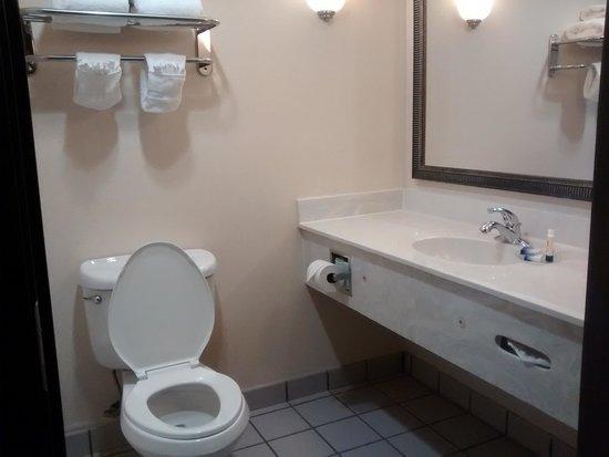 BEST WESTERN Alamo Suites: bathroom