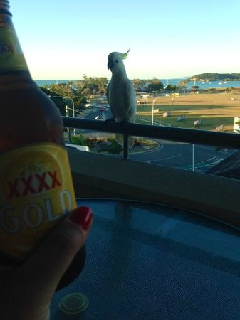 Portside Whitsunday : Beer with a mate