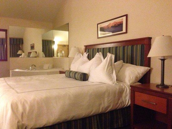 BEST WESTERN Windsor Inn: King room