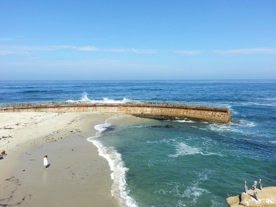 We Love Tourists: The Children's Pool in La Jolla, CA