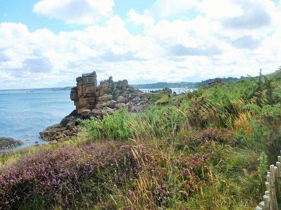 Sentier des douaniers: Pink Granite Coast near Ploumanac'h