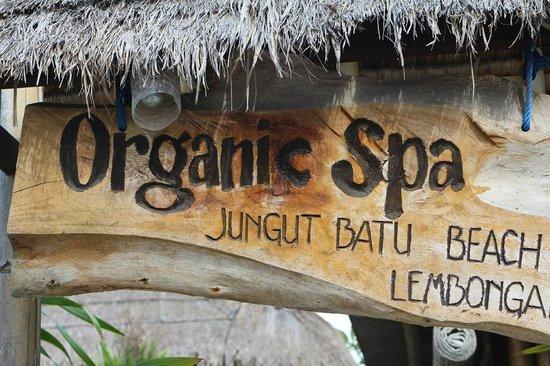 Organic Lembongan Spa