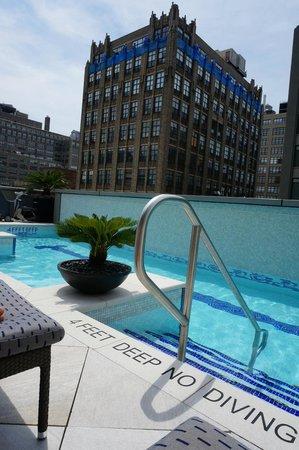 Pool Area Picture Of The Dominick Hotel New York City Tripadvisor
