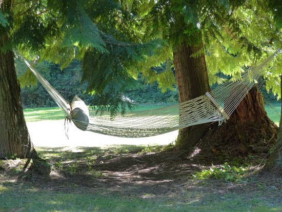 Meritage Meadows Inn: Hammock in the garden