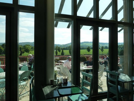 Avoca Rathcoole : View from our table
