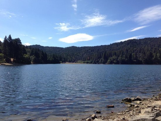 Lake Gregory Regional Park: Very quiet for a Saturday