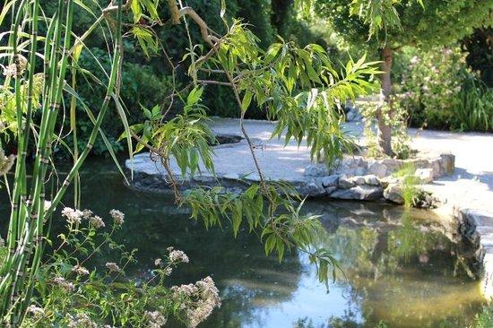 Vue du jardin photo de jardin aquatique aux fleurs de l for Jardin aux fleurs