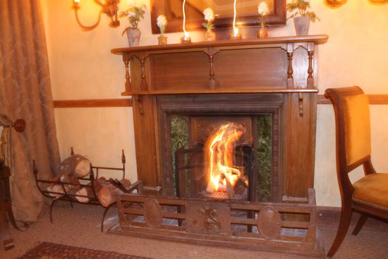 Dawsons Game and Trout Lodge: Log Fire at dinner