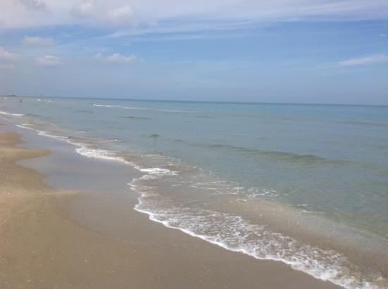Blue Moon : пляж всея Венеции