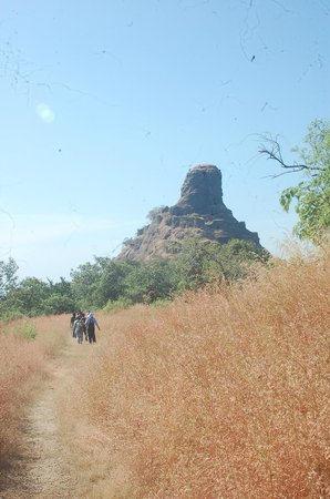 Karnala Fort: At the top plains