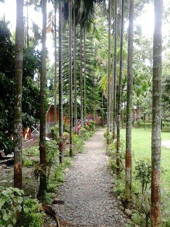 Tiyabon Resort