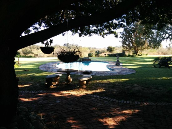 Gerald's Gift Guest House: il giardino con piscina