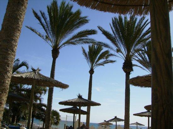 SBH Costa Calma Beach Resort: Piscina