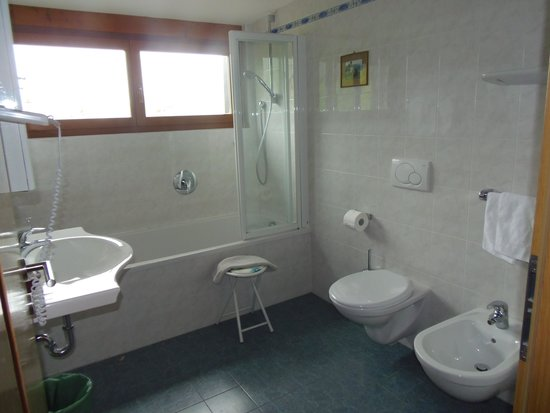 Hotel Ronce: BAGNO