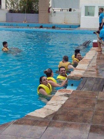 Interactive Aquarium: atividades em grupos