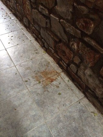 Parkim Ayaz Hotel: The vomit outside our door after one night