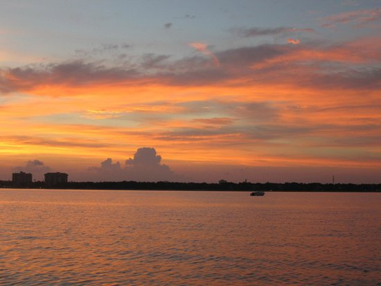Tampa Water Taxi Company: Tampa sunset