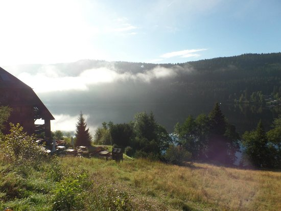 Boutique-Hotel Alemannenhof : titisee lake morning sun