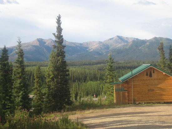 Denali Grizzly Bear Cabins & Campground: toll