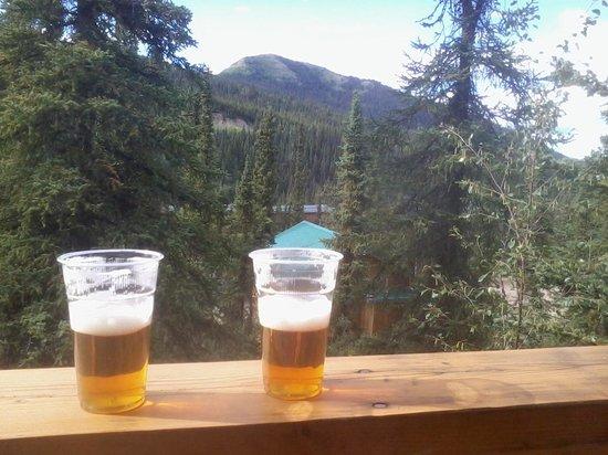 Denali Grizzly Bear Cabins & Campground: Blich ;-) von Terasse