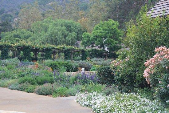 San Ysidro Ranch, a Ty Warner Property : SYR Gardens