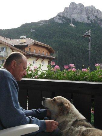 Alpen Hotel Corona Sport & Wellness: Camera con vista sulle Dolomiti