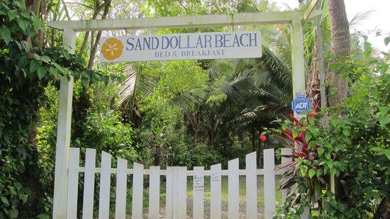 Sand Dollar Beach Bed & Breakfast: Sand Dollar Beach B&B