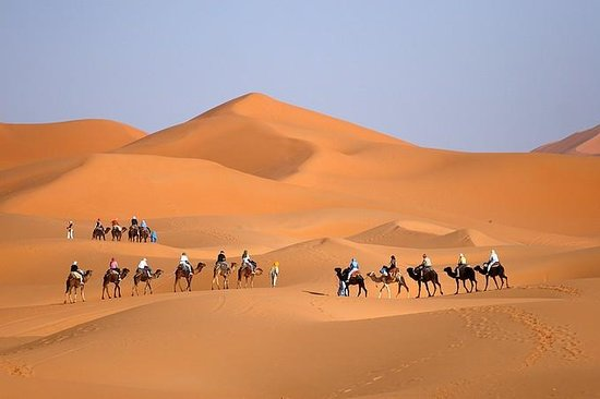 Private Desert Tours - Day Tours