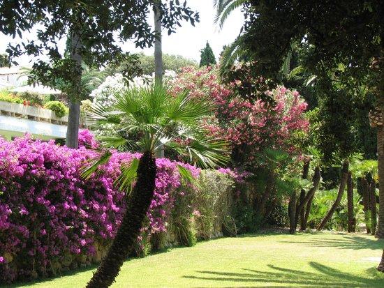 Formentor, a Royal Hideaway Hotel: garden