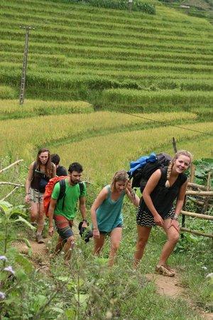 Asia Sapa Travel - Day Tours