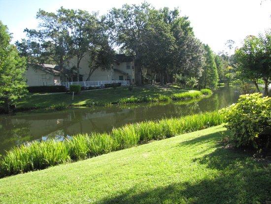 Oak Plantation Resort: Hermoso lago en el centro del complejo