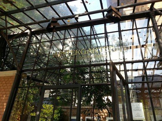 Wintergarten im Literaturhaus: A quiet and beautiful place for breakfast.