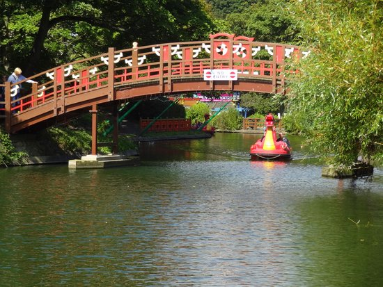 Peasholm Park: A bridge too far.
