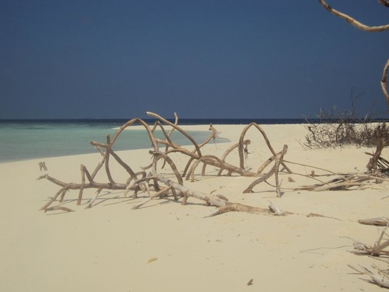 Alimatha Island : Che mare