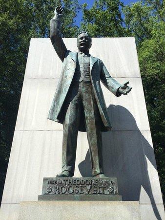 Theodore Roosevelt Island Park: Roosevelt Island, Washington DC