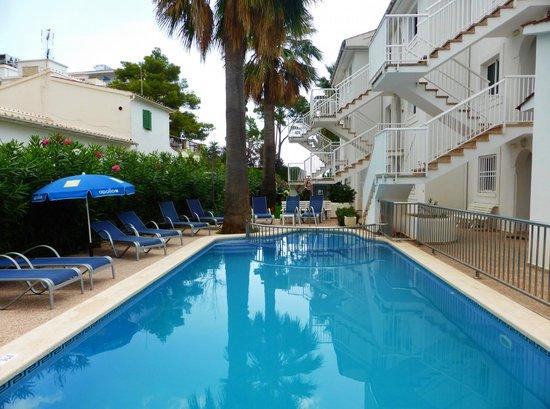 Playas de Alcudia : Pool area