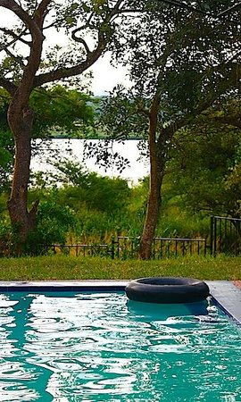 Murchison River Lodge: View from the swimming pool