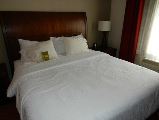Hilton Garden Inn Chattanooga / Hamilton Place: King Bed