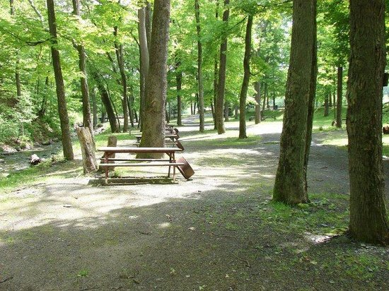 Kittatinny River Beach Campground : River Beach Campsites creek side campsites in July