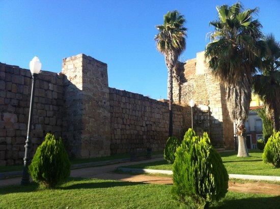 les murailles alcazaba