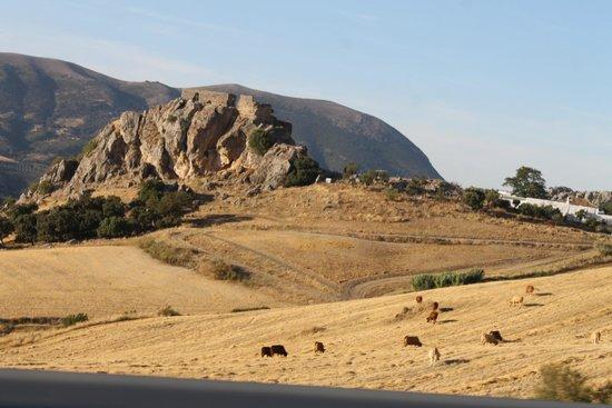 Parque natural de la Sierra de Grazalema : Fortalezas arabes