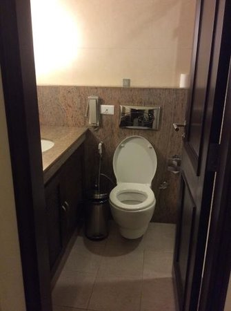 Leisure Inn Grand Chanakya: tiny washroom
