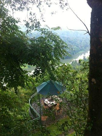 Villa Rosa : Breakfast... in the jungle
