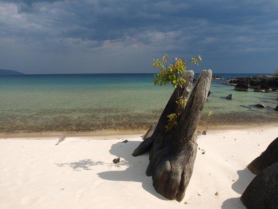 Nkwichi Lodge: La spiaggia del lodge