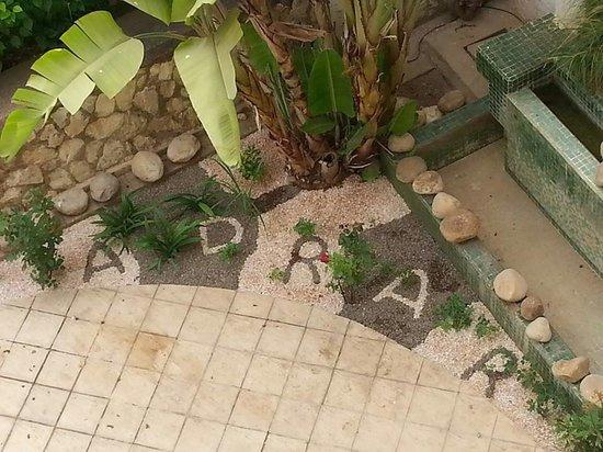 Hotel Adrar: Jardin
