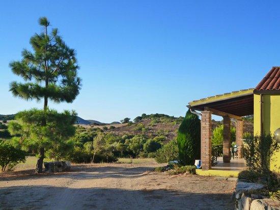 Agriturismo Terranieddas: Esterno camere
