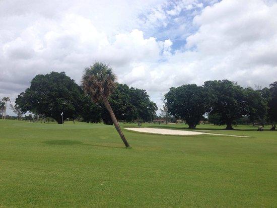 Hotel Indigo Miami Lakes : Das Hotel ist direkt am Golfplatz gelegen.