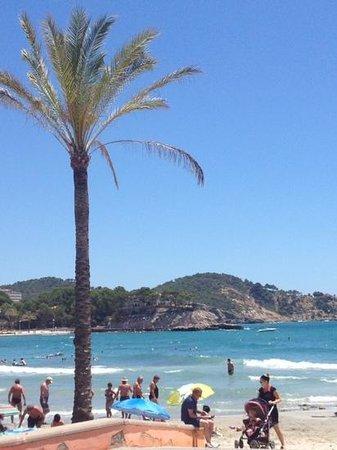 Flor Los Almendros Hotel and Apartments: beach